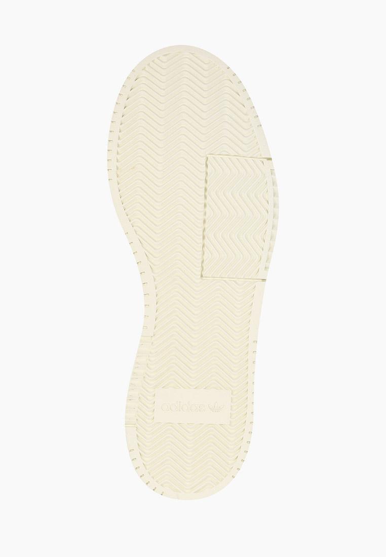 Мужские кеды Adidas Originals (Адидас Ориджиналс) FY5473: изображение 5