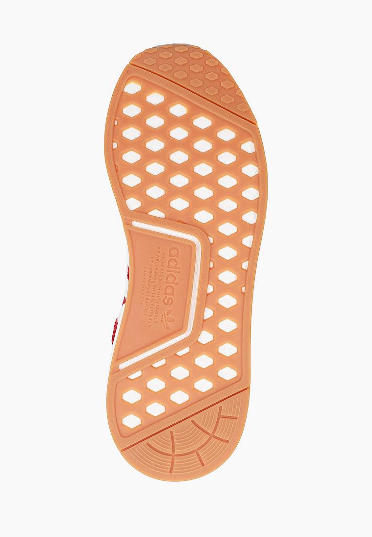 Мужские кроссовки Adidas Originals (Адидас Ориджиналс) FX6787: изображение 5