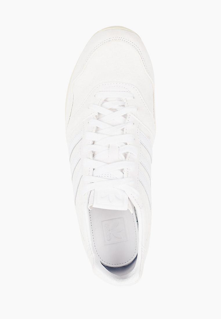 Мужские кроссовки Adidas Originals (Адидас Ориджиналс) FY7325: изображение 4