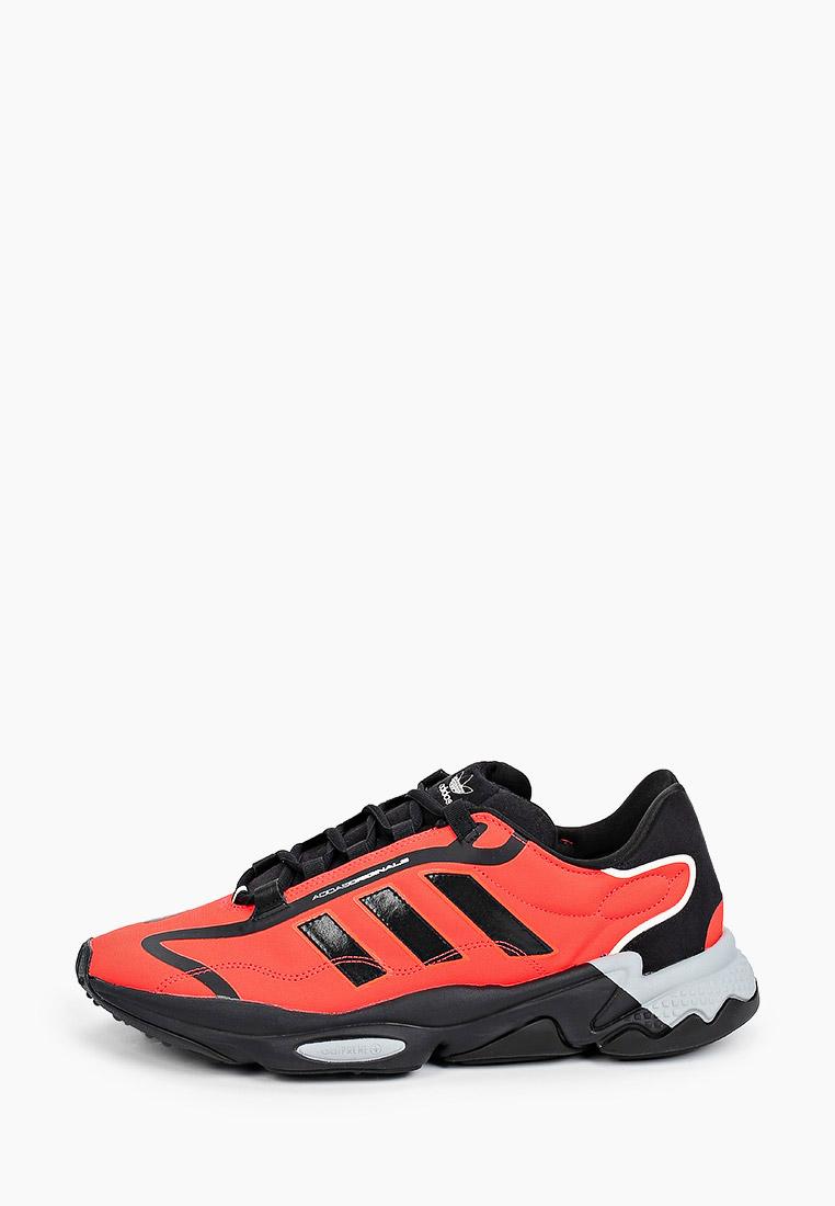 Мужские кроссовки Adidas Originals (Адидас Ориджиналс) G55505
