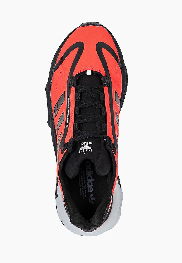 Мужские кроссовки Adidas Originals (Адидас Ориджиналс) G55505: изображение 4