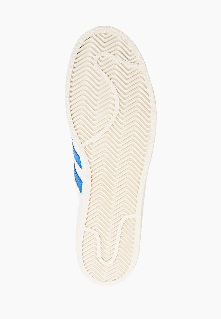 Мужские кеды Adidas Originals (Адидас Ориджиналс) FW4406: изображение 5