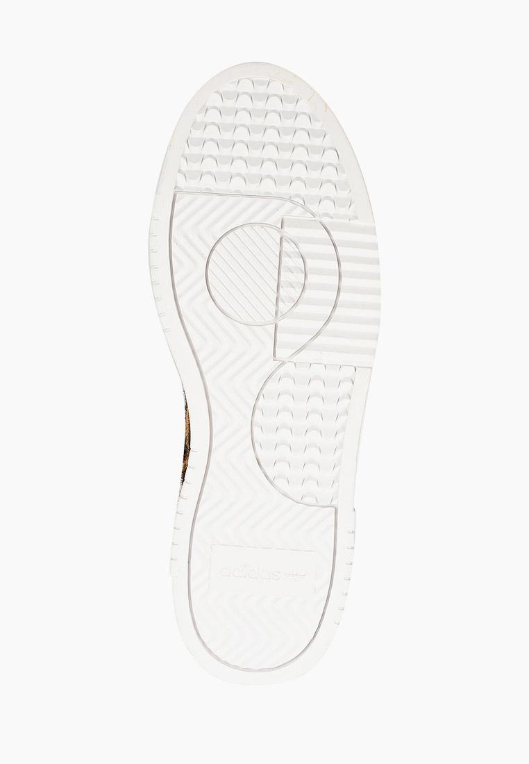 Мужские кеды Adidas Originals (Адидас Ориджиналс) EG8732: изображение 5