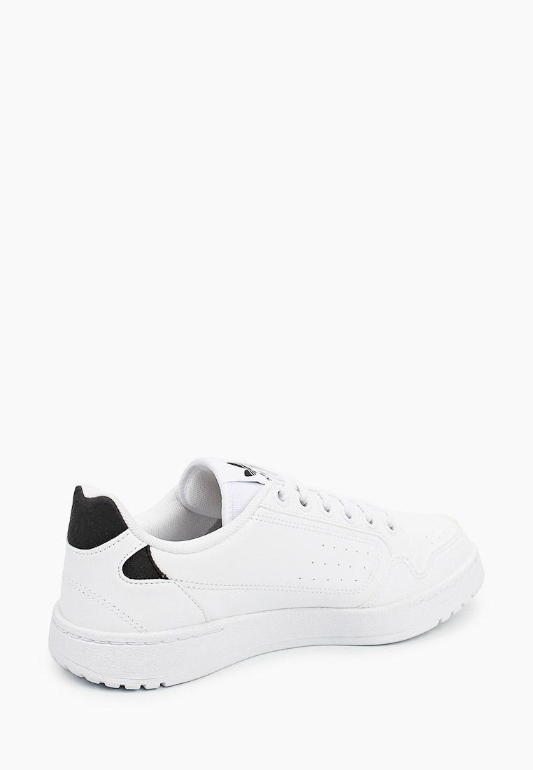 Мужские кеды Adidas Originals (Адидас Ориджиналс) FZ2251: изображение 3