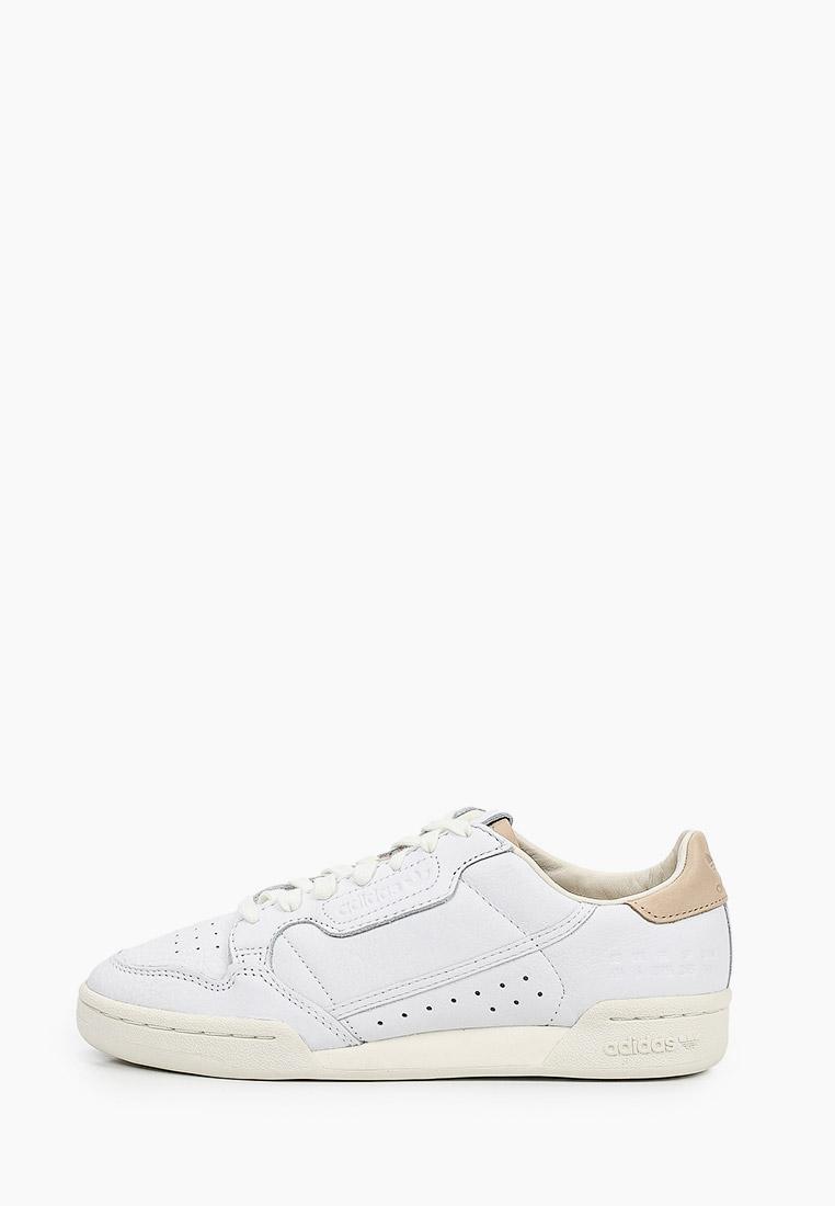 Мужские кеды Adidas Originals (Адидас Ориджиналс) FY5469: изображение 1