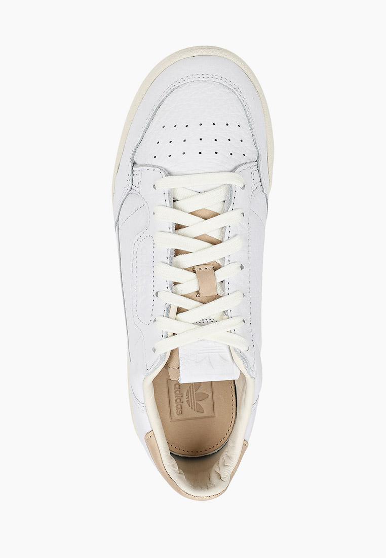 Мужские кеды Adidas Originals (Адидас Ориджиналс) FY5469: изображение 4
