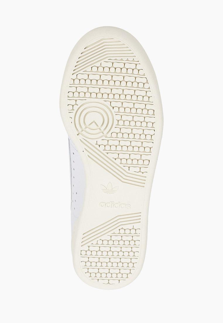 Мужские кеды Adidas Originals (Адидас Ориджиналс) FY5469: изображение 5