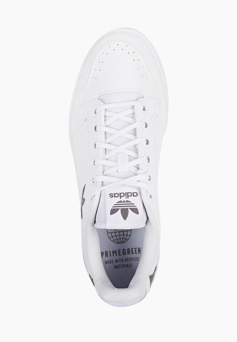 Мужские кеды Adidas Originals (Адидас Ориджиналс) FZ2246: изображение 4