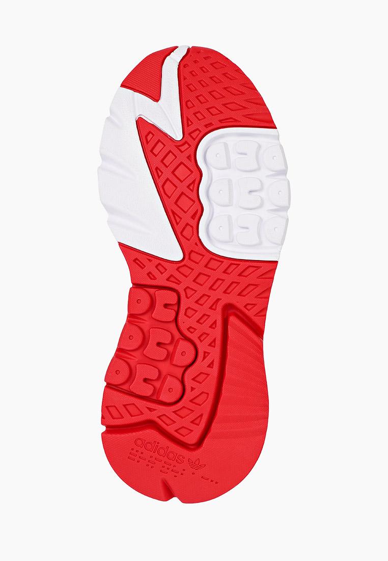 Женские кроссовки Adidas Originals (Адидас Ориджиналс) H03248: изображение 5
