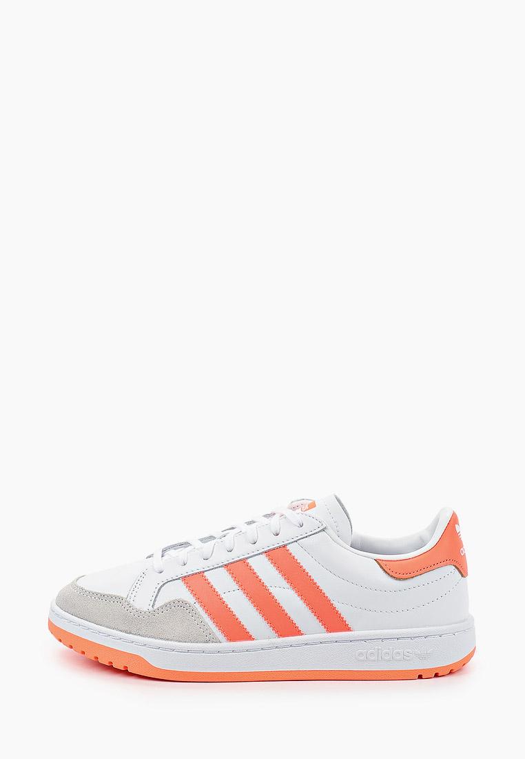 Женские кеды Adidas Originals (Адидас Ориджиналс) EF6071