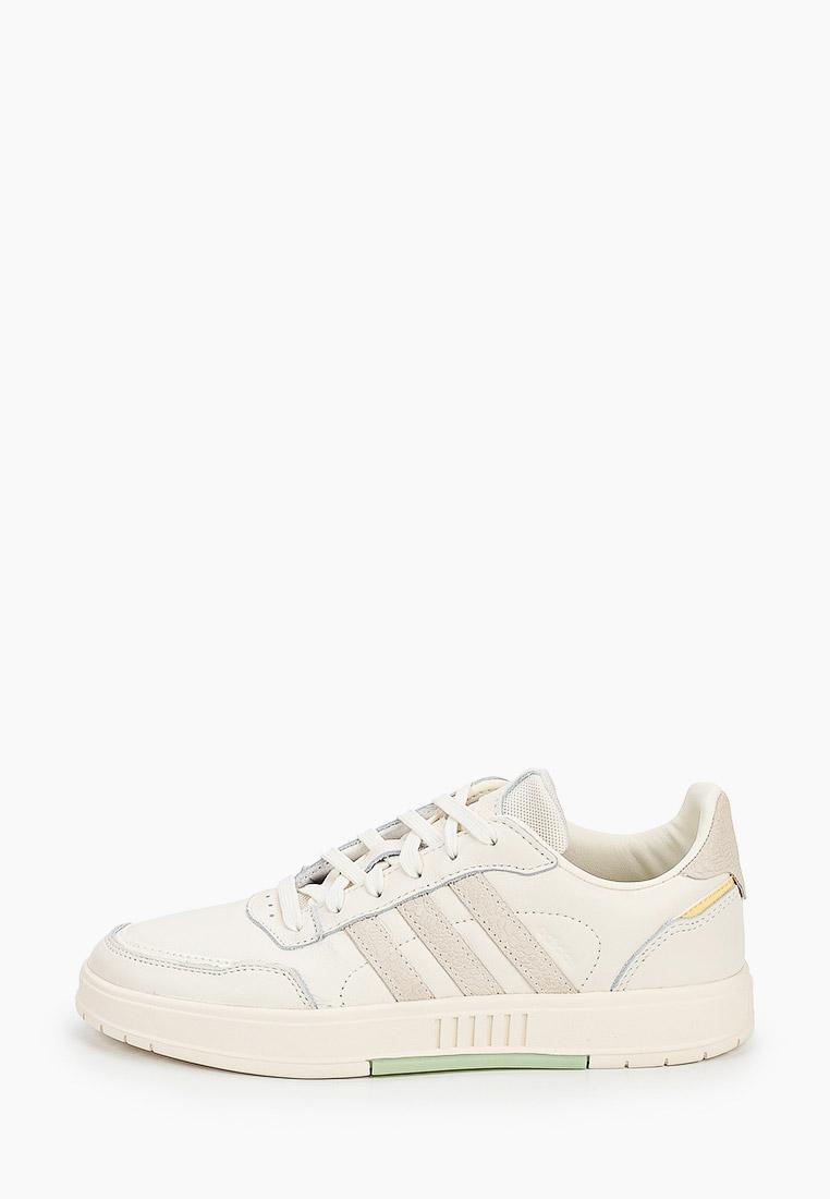 Женские кеды Adidas Originals (Адидас Ориджиналс) FW2900