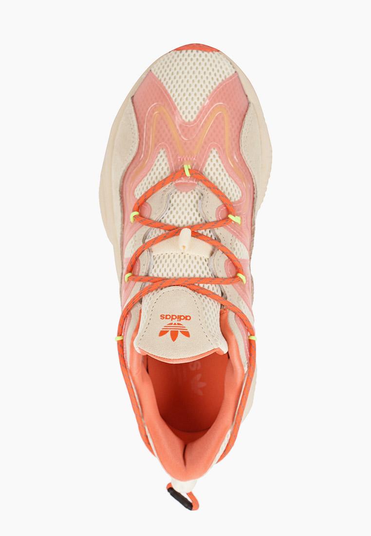 Женские кроссовки Adidas Originals (Адидас Ориджиналс) H01568: изображение 4