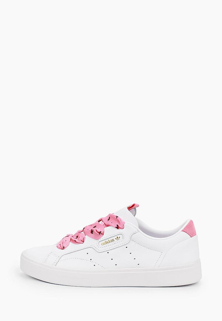 Женские кеды Adidas Originals (Адидас Ориджиналс) FY6679