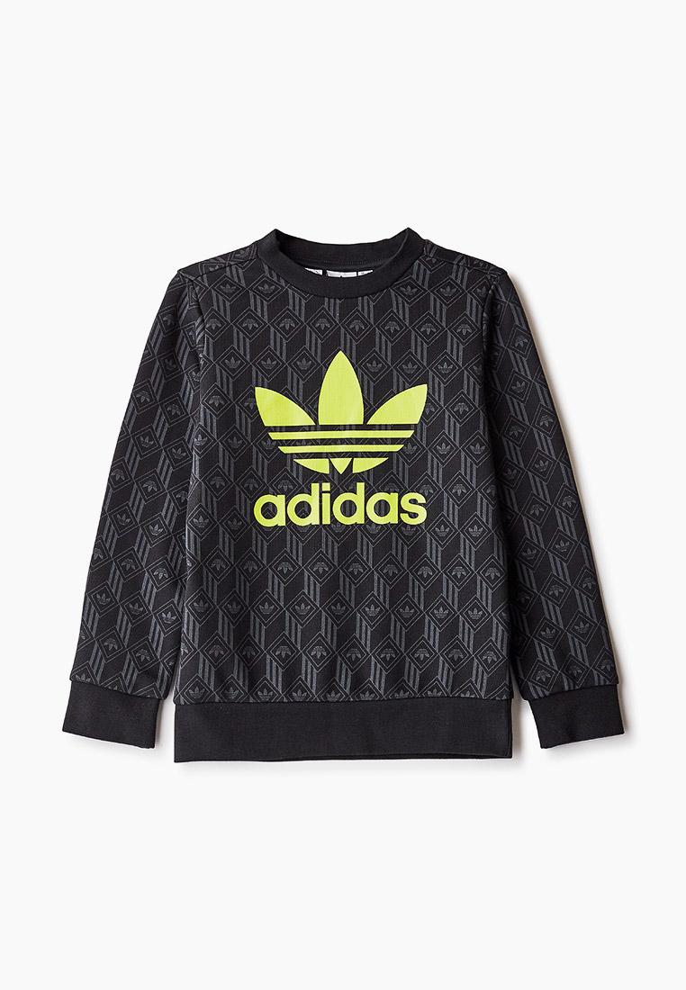 Толстовка Adidas Originals (Адидас Ориджиналс) GD2810