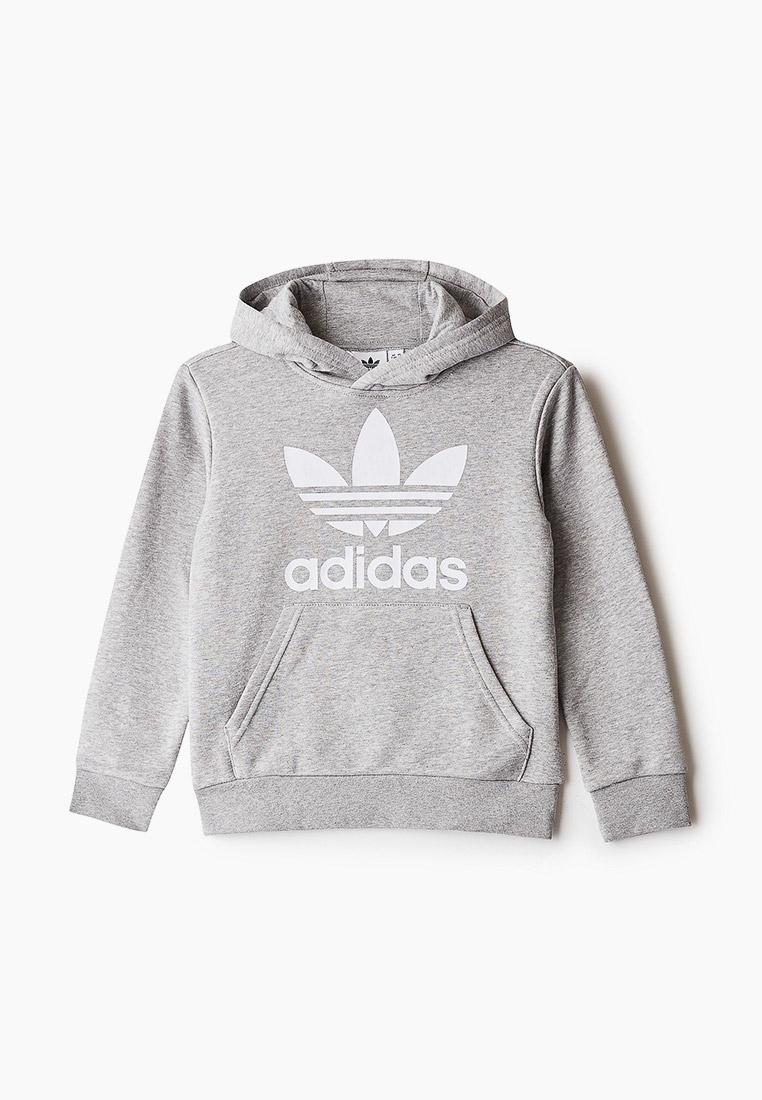 Толстовка Adidas Originals (Адидас Ориджиналс) GE1979