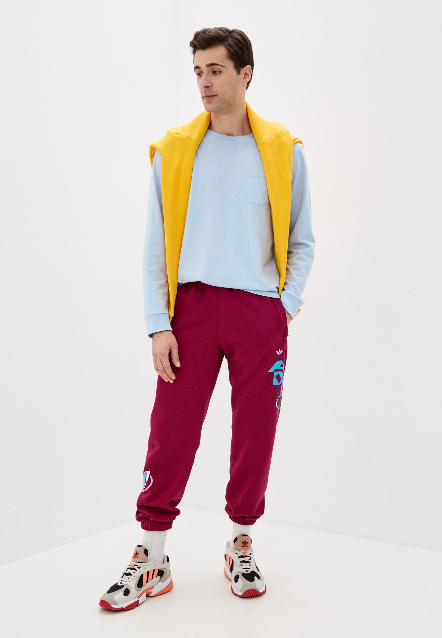 Мужские спортивные брюки Adidas Originals (Адидас Ориджиналс) GD2147: изображение 2