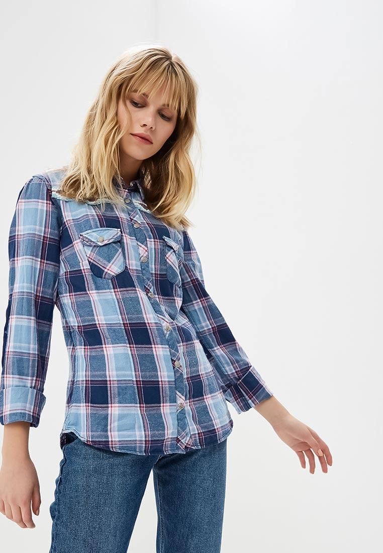 Женские рубашки с длинным рукавом Alcott (Алкотт) CF880DO