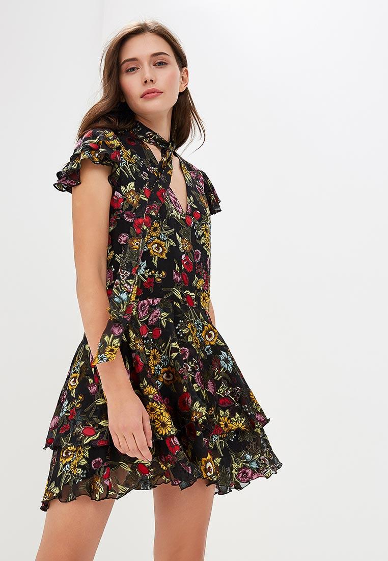 Вечернее / коктейльное платье Alice + Olivia CC809B63501