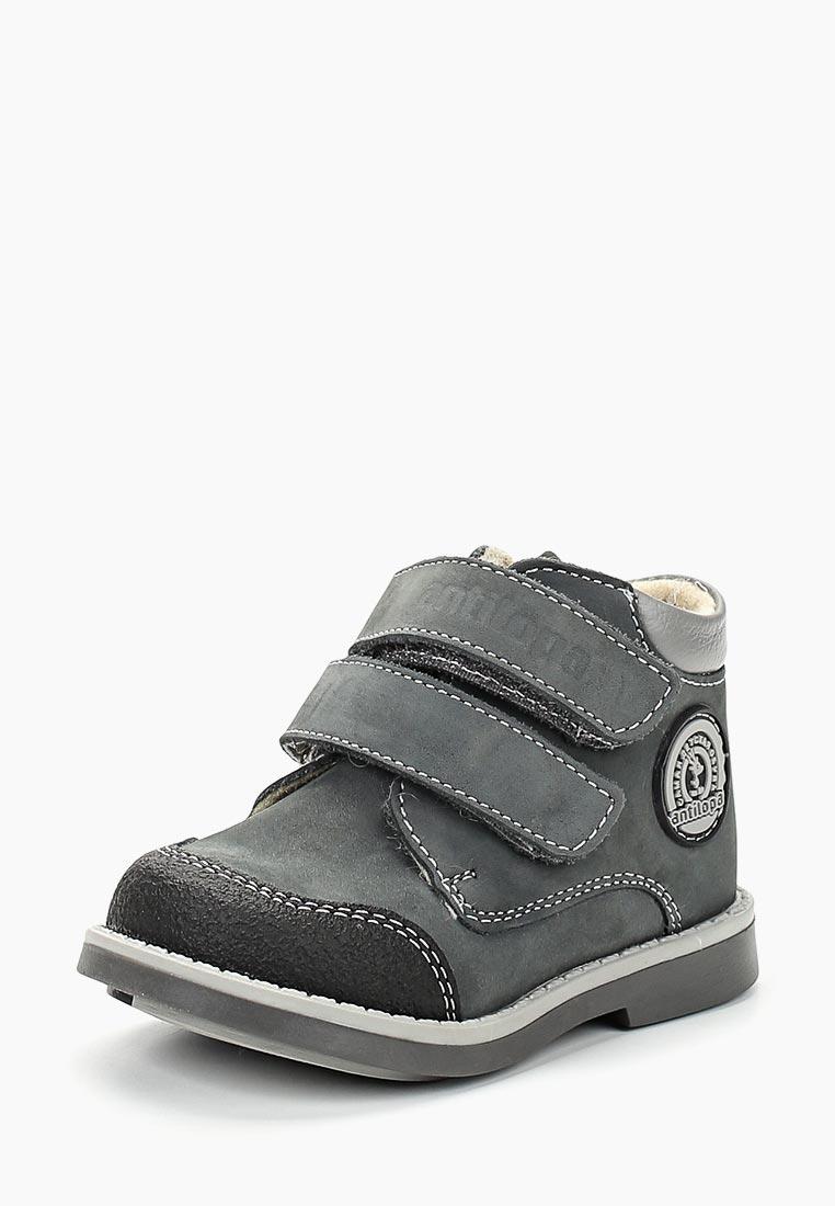 Ботинки для мальчиков Antilopa BO-167(5)