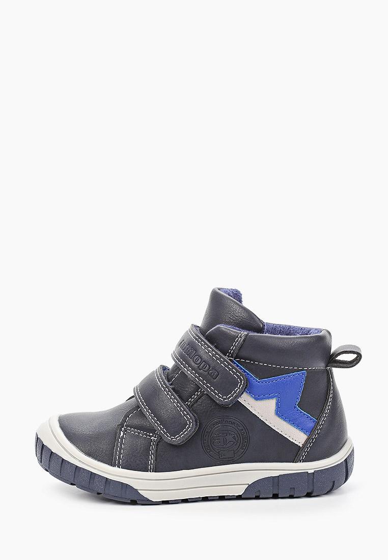 Ботинки для мальчиков Antilopa AL 202144