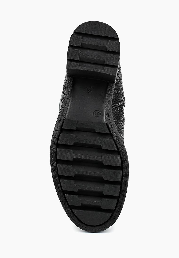 Женские сапоги Ascalini R5095E: изображение 3