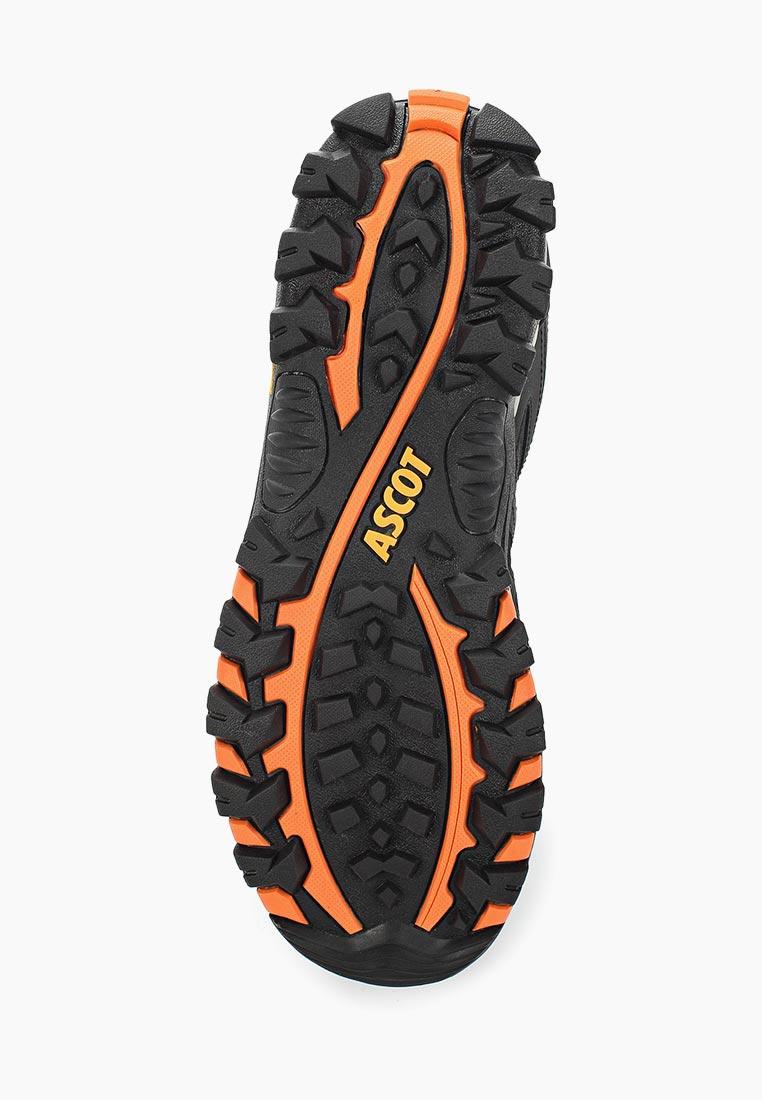 Спортивные мужские ботинки Ascot (Аскот) SHN 2718 004 VOYAGER: изображение 3
