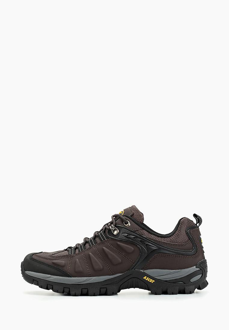 Мужские кроссовки Ascot (Аскот) ASH 2020 16VRT VORTEX
