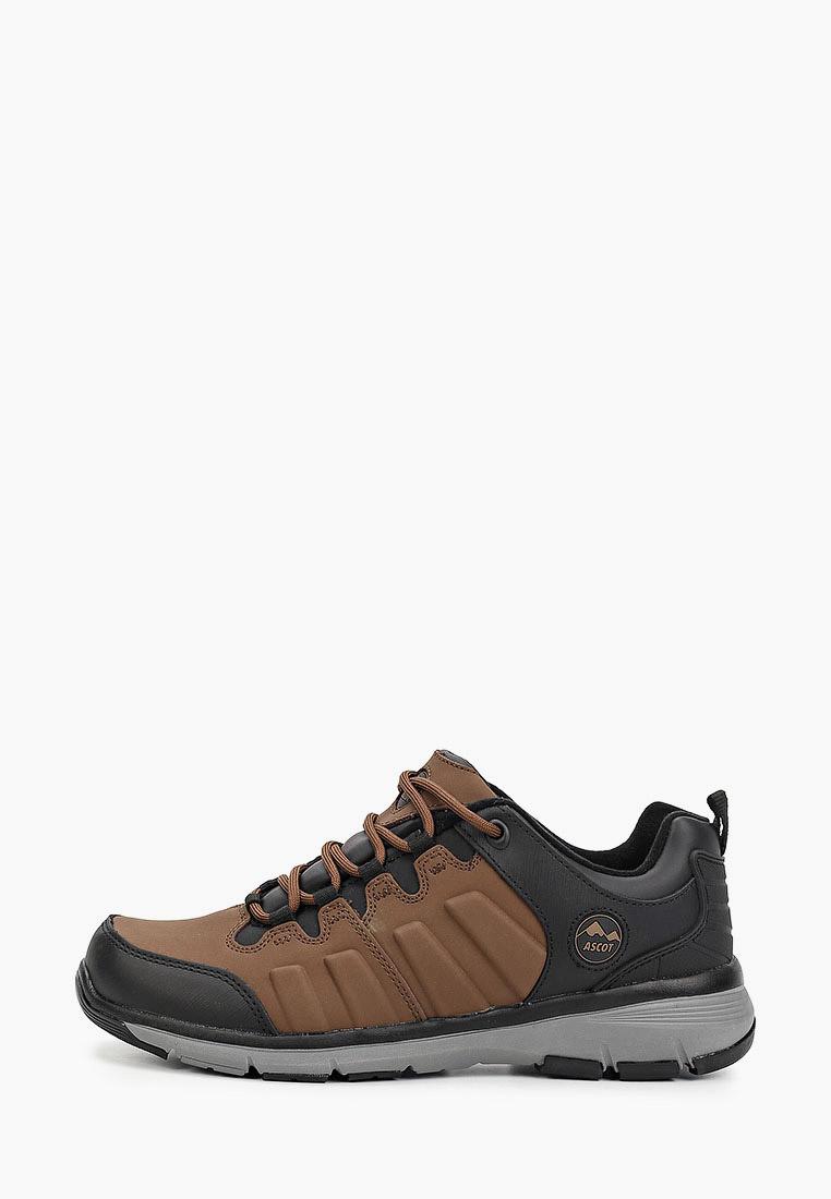 Мужские кроссовки Ascot (Аскот) ASH 2030 46TL TRAIL LOW