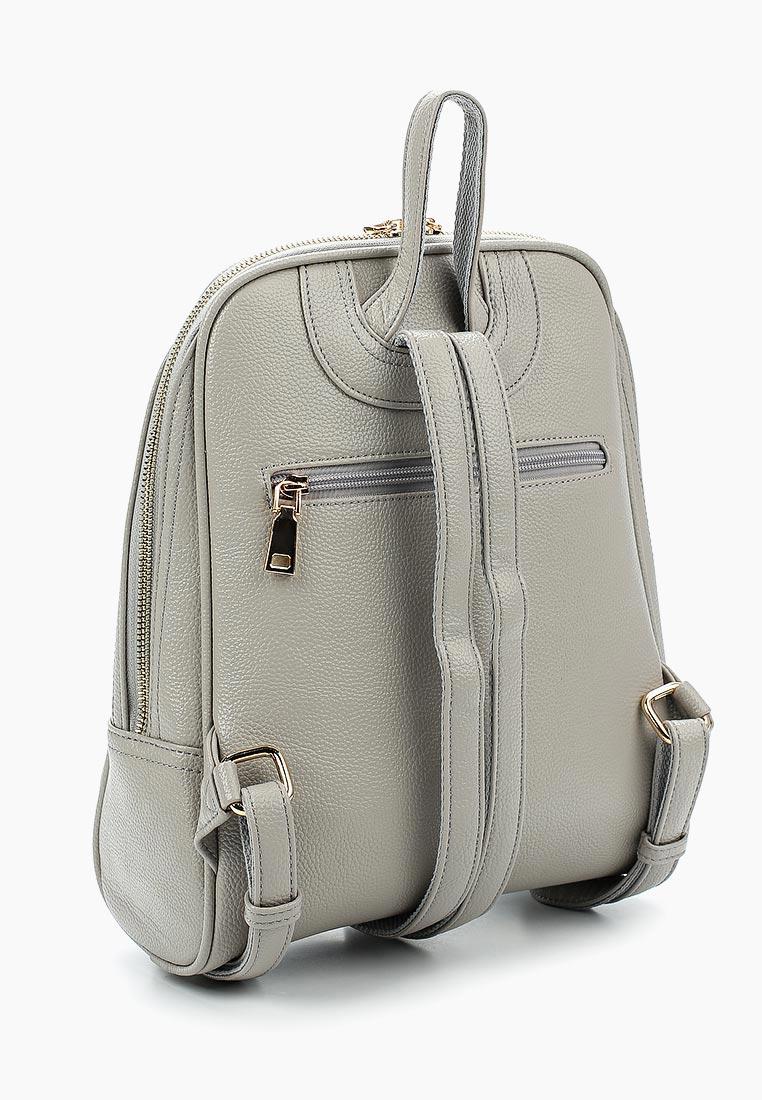Городской рюкзак Baggini (Баггини) 29836-3/18: изображение 2