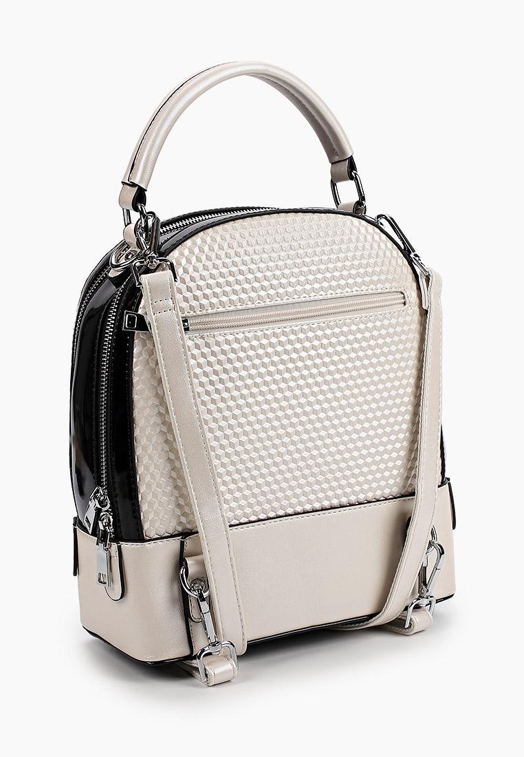 Городской рюкзак Baggini (Баггини) 12029/30: изображение 2