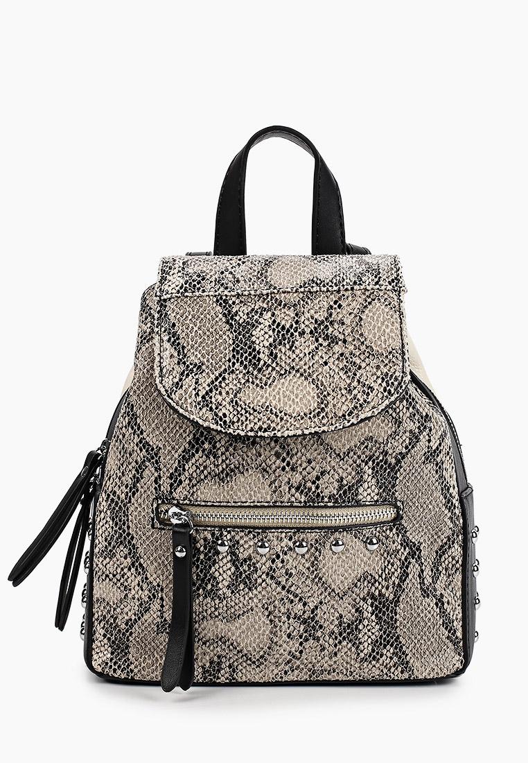 Городской рюкзак Baggini (Баггини) 40002/31