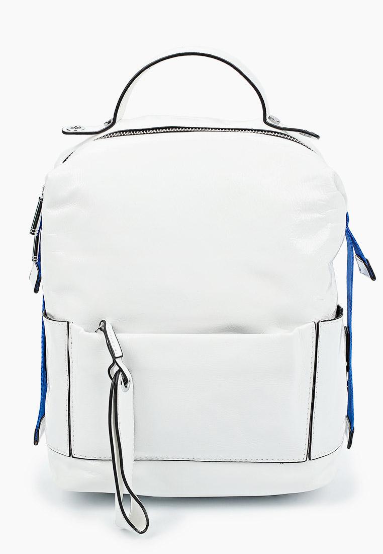 Городской рюкзак Baggini (Баггини) BL1389/30