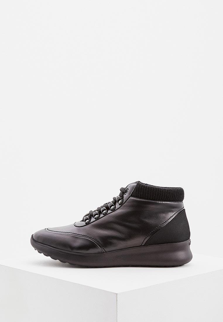 Мужские кроссовки Baldinini (Балдинини) 947513ASSKW0000NNXXX