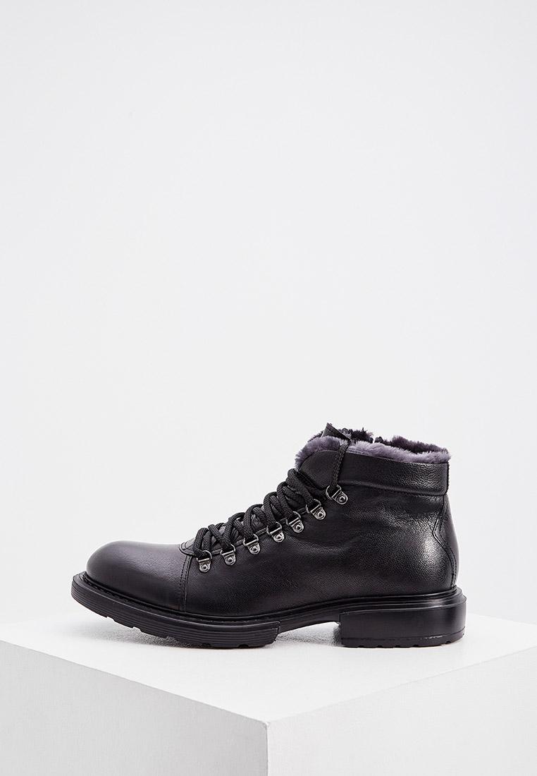 Мужские ботинки Baldinini (Балдинини) 147023AMARE000000XXX