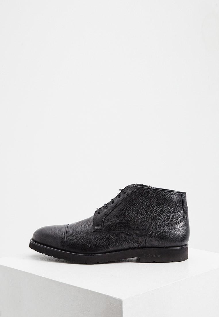 Мужские ботинки Baldinini (Балдинини) 147002ACERV000000XXX