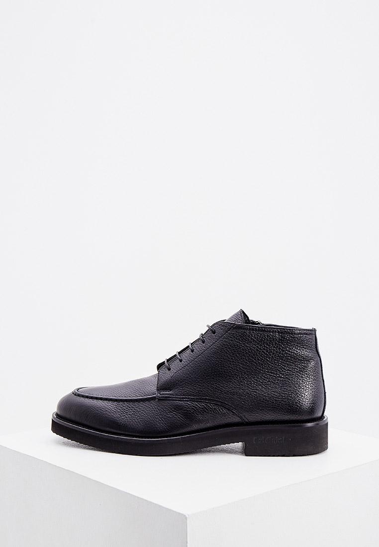 Мужские ботинки Baldinini (Балдинини) 147132ACERV000000XXX