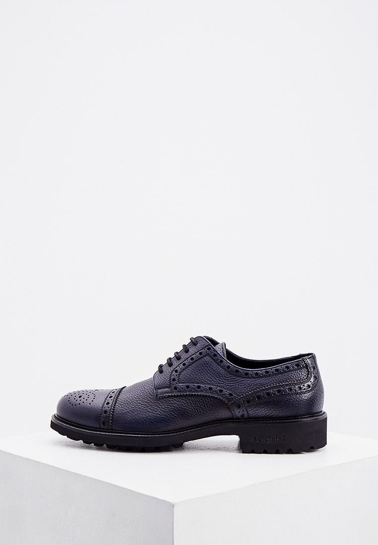 Мужские туфли Baldinini (Балдинини) 147219PENGL101010XXX: изображение 1