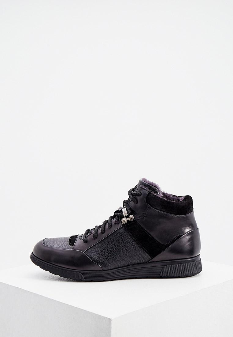 Мужские кроссовки Baldinini (Балдинини) 147031APREA000000XXX