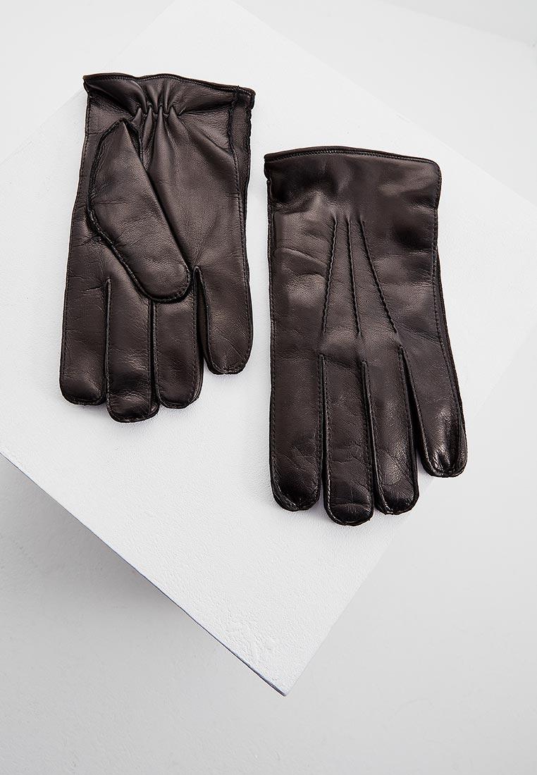 Мужские перчатки Baldinini (Балдинини) 927009NAPP000000XXX