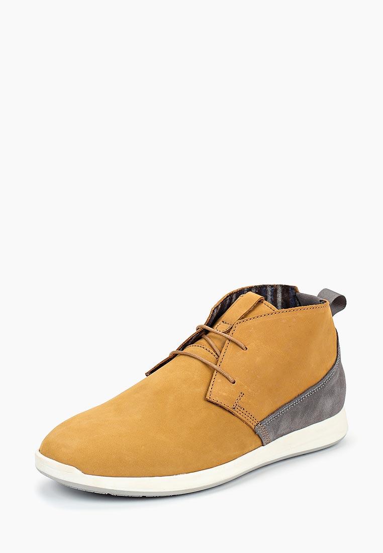 Мужские ботинки Beppi (Беппи) 2164961