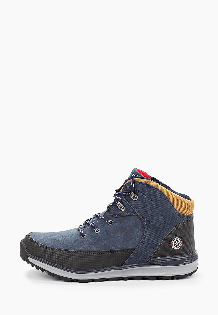 Мужские ботинки Beppi (Беппи) 2175815