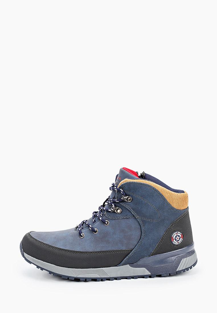 Мужские ботинки Beppi (Беппи) 2181390