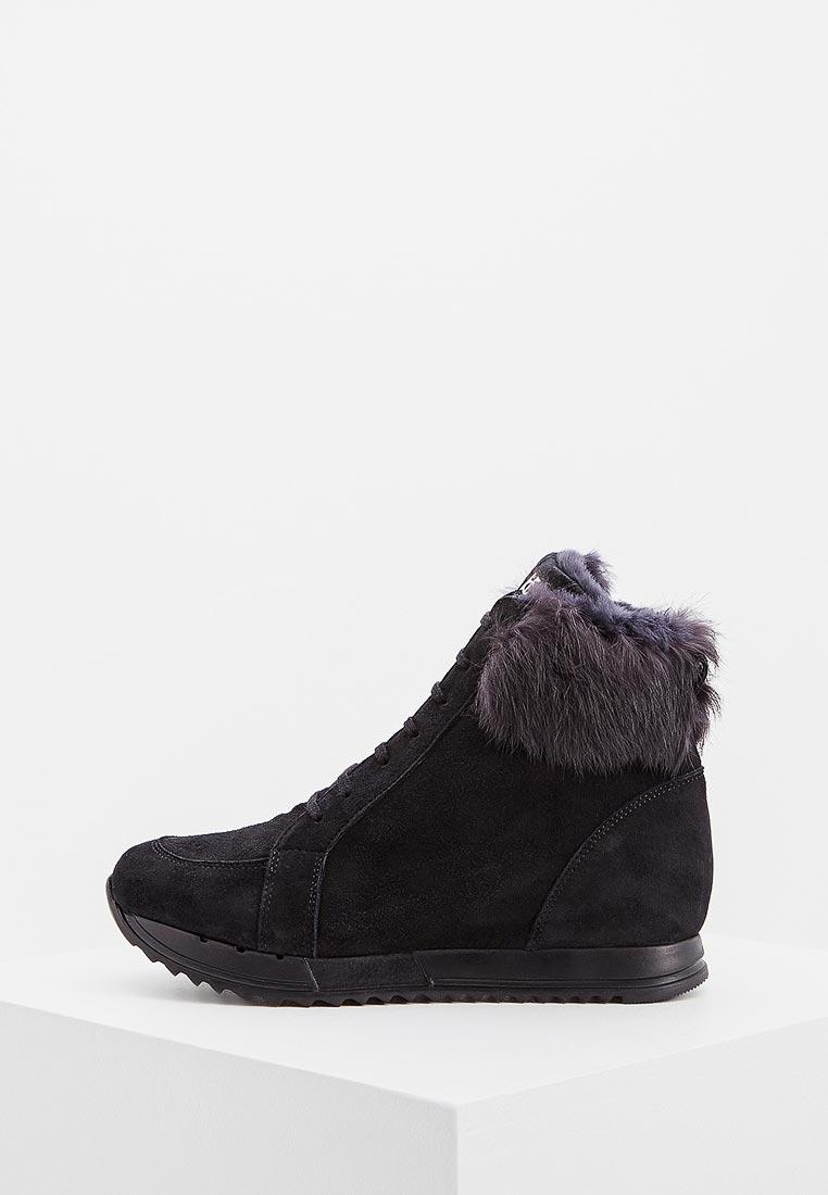 Женские ботинки Botticelli PLD23304M