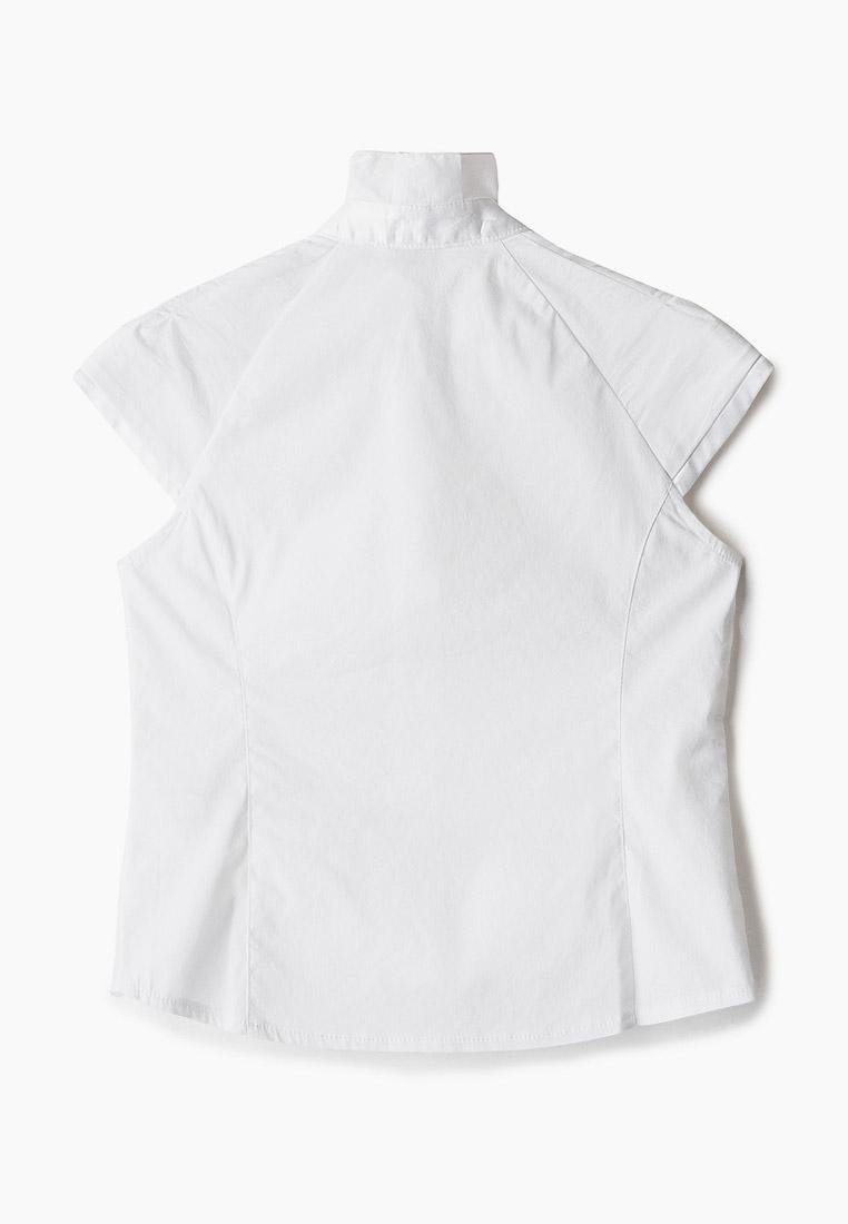 Рубашка Cleverly S6CB56-0401: изображение 2