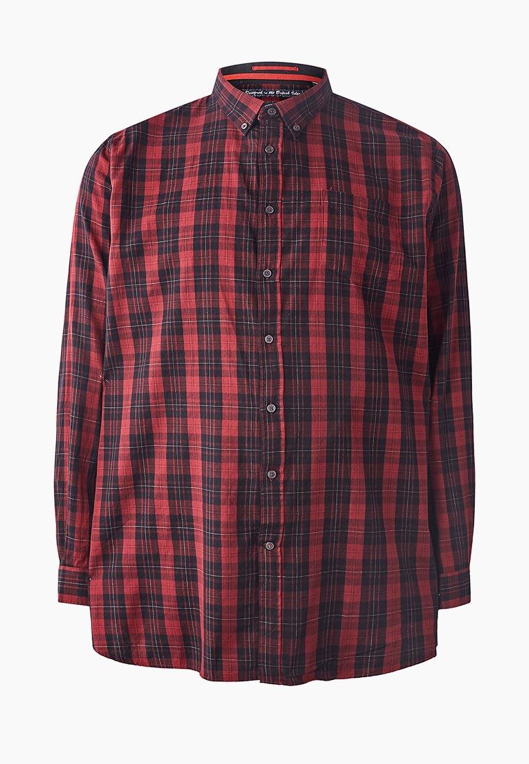 Рубашка с длинным рукавом D555 KS11185