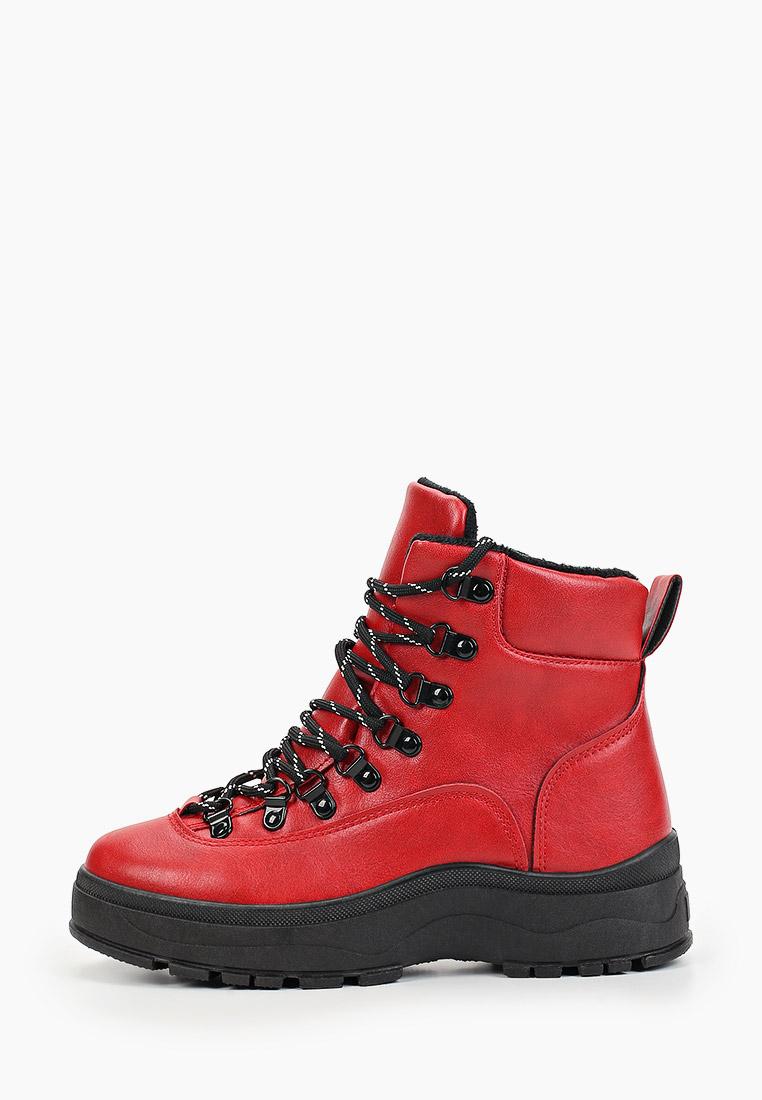Женские ботинки Damerose F2-BK-632
