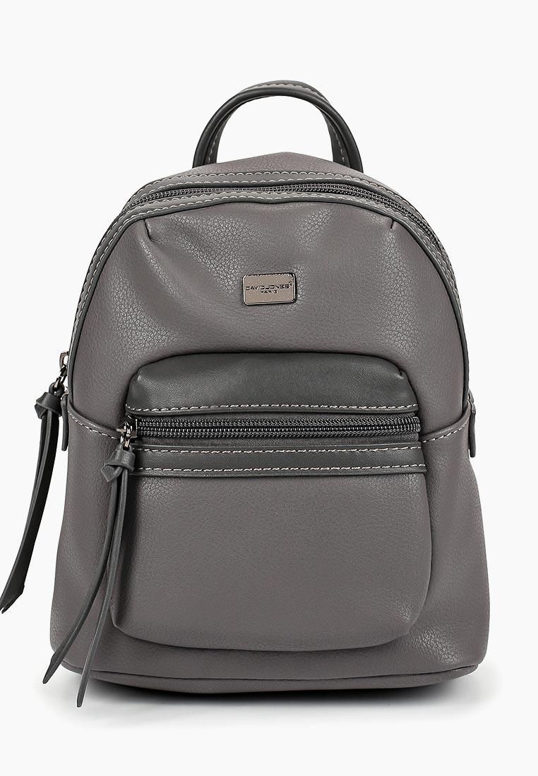 Городской рюкзак David Jones (Дэвид Джонс) CM3903_серый