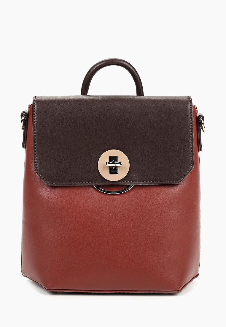 Городской рюкзак David Jones (Дэвид Джонс) 5863-3_оранжевый