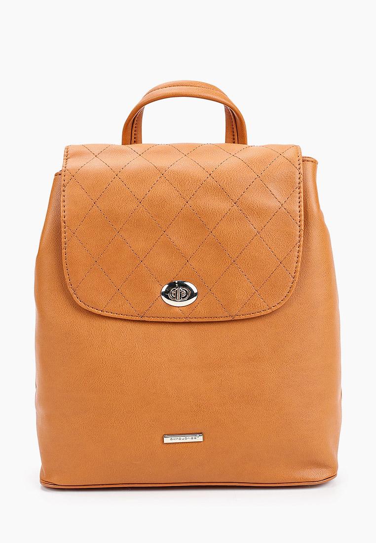 Городской рюкзак David Jones (Дэвид Джонс) CM5610_рыжий