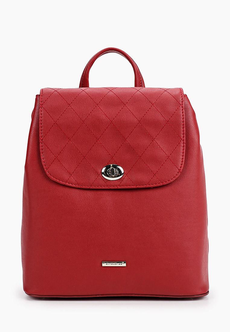 Городской рюкзак David Jones (Дэвид Джонс) CM5610_красный